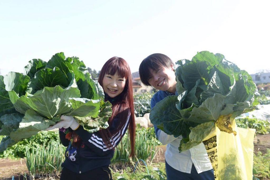 野菜収穫会9