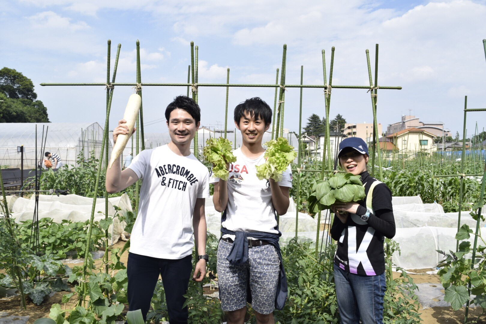 新鮮野菜を採りまくろう会