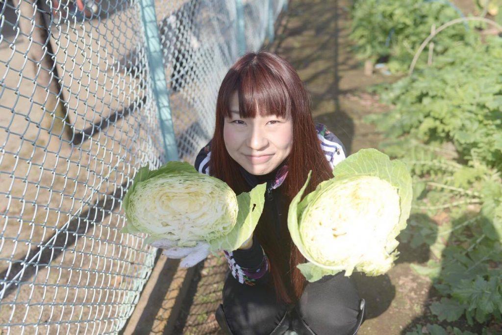 野菜収穫会3
