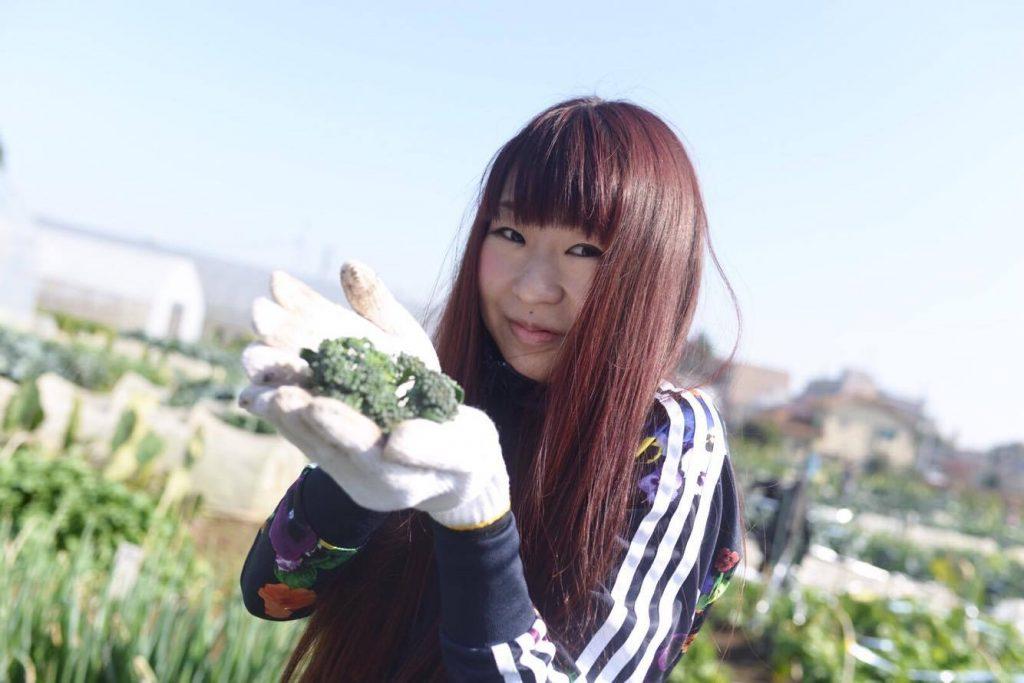 野菜収穫会2