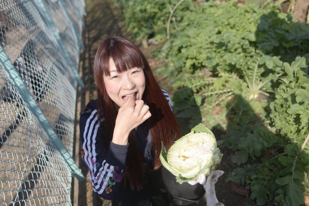 野菜収穫会4